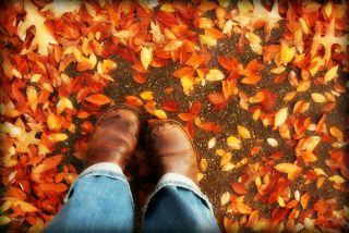 Halloween boots